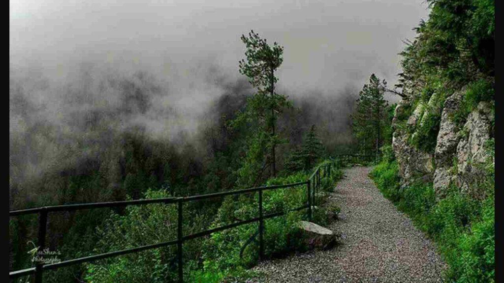Ayubia National Park